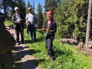 Wildkräuter-Exkursion mit Yvonne Bollinger, 16. Juni 2018